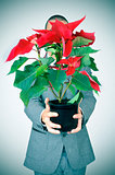 young man in suit with a poinsettia plant
