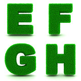 Letters E, F, G, H. Alphabet Set of Green Grass.