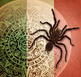 Background with Aztec calendar and tarantula