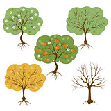 vector set of a harvest seasons of a tree