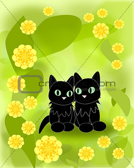 Black Cats and yellow Flowers