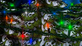 Winter Christmas Fir Tree with Lights