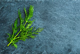 Closeup on dill on stone substrate