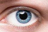 Close up blue eye