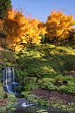 Stunning vibrant Autumn landscape of waterfall