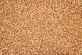 teff grain background