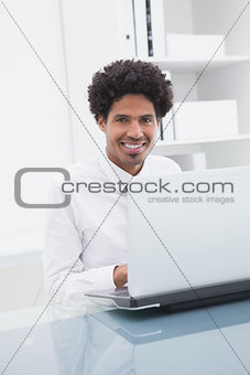 Smiling businessman sitting and using laptop