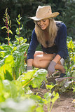 Cute blonde gardening on sunny day