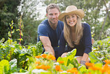 Cute couple gardening on sunny day