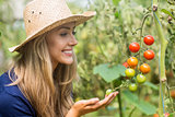 Pretty blonde looking at tomato plant