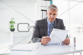 Mature businessman looking at document