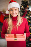 Pretty woman in santa hat smiling and holding a gift