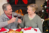 Senior couple toasting red wine