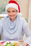 Portrait of pretty young woman in santa hat smiling