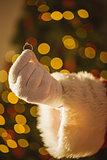 Hand of santa holding engagement ring
