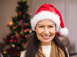 Portrait of a smiling brunette in santa hat