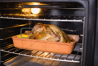 Close up of roast turkey in oven for christmas dinner