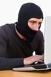 Burglar with balaclava using laptop
