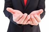 Businessman presenting with his hands