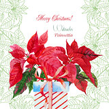Background  with bouquet of red poinsettia and box