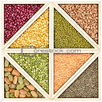 bean, pea and lentil abstract