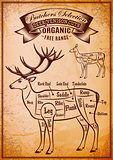 vector diagram cut carcasses deer