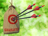 Guarantee - Arrows Hit in Red Target.