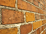 Wall of red bricks.