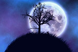 Big moon and tree