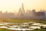 hong kong countryside sunset
