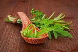 Culinary herbs variation.