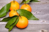 Mandarin or tangerine fruit