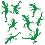 silhouettes of salamander