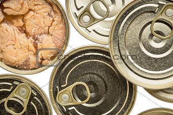 Alaskan canned salmon
