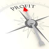 Profit campass