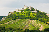 ruins of Falkenstein Castle with vineyard, Lower Austria, Austri