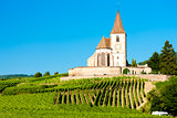 church with vineyard, Hunawihr, Alsace, France