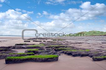 slimey green mud banks at Beal beach