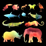 watercolor vector different animals