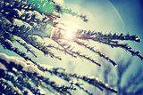 Vintage winter background