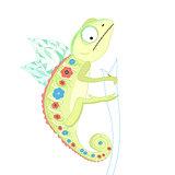 funny green chameleon