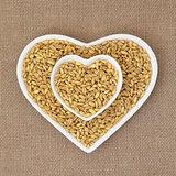 Kamut Khorasan Wheat
