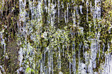Icicles on Mountain Cliff