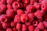Beautiful Red Summer Background of Juicy Raspberries