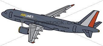 Blue airliner