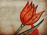 Red tulip on grunge background