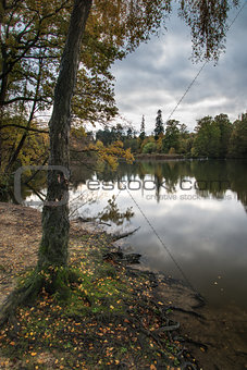 Beautiful vibrant Autumn woodland reflecions in calm lake waters