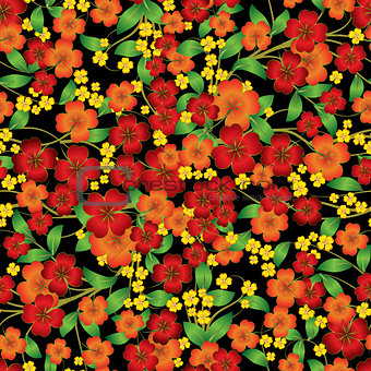 abstract floral ornament on black