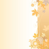Floral  background in autumn