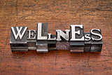 wellness word in metal type